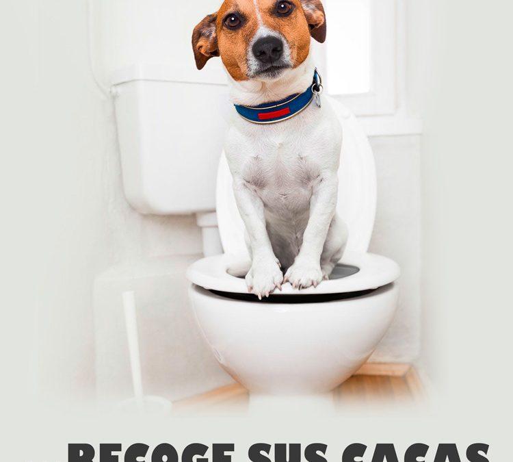 Móstoles lanza una campaña para concianciar sobre la recogida de heces caninas